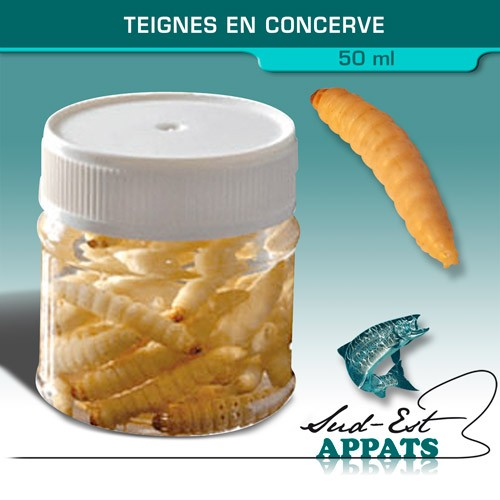 Teignes en conserves - 50ml